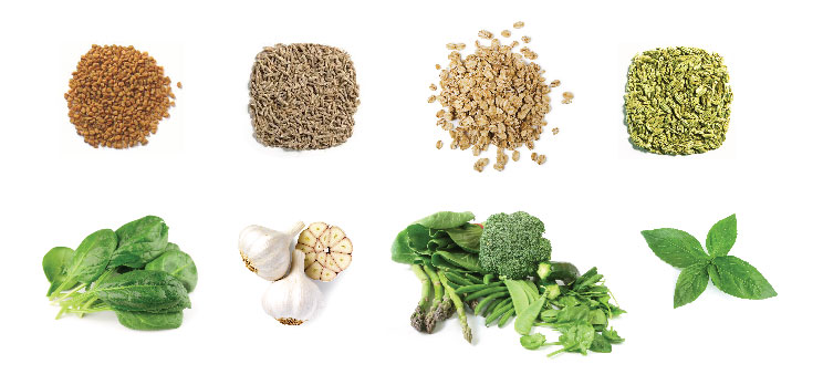 Indian Foods That Help To Increase Breast-Milk Supply-8267